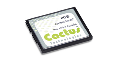 Cactus Technologies  303 Series - CF Card
